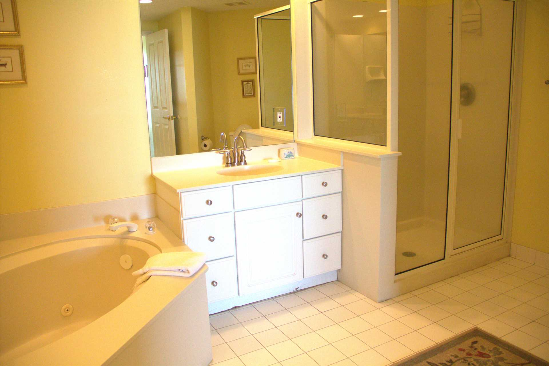 The master bedroom comes with a shower and a soaking tub